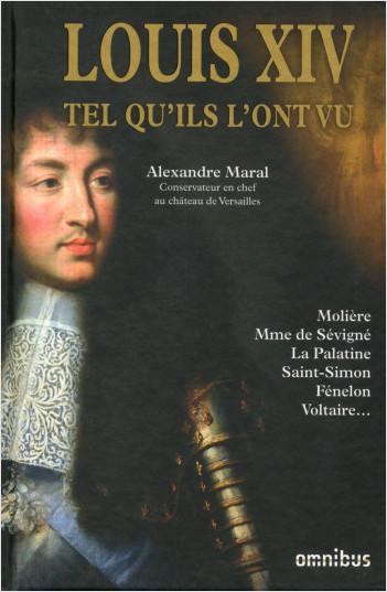 Louis XIV tel qu'ils l'ont vu